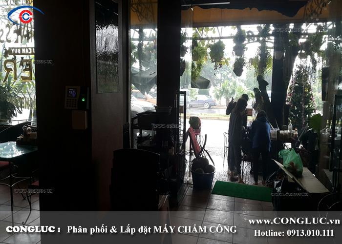 Lắp máy chấm công vân tay tại Cát Bà Hải Phòng cho nhà hàng Oasis Bar